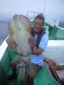 アオリイカ 大物釣果